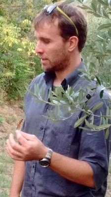 Alberto e gli insetti