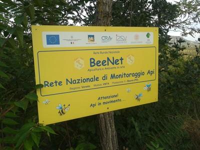 Il villaggio delle api